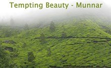 4 nights 5 days kerala package,honeymoon group tour packages