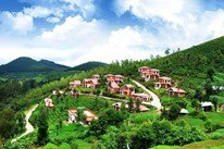 bangalore mysore ooty tour package price (4 nights /5 days) Rs.9600 per head ( Total 6 Pax)