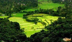 coorg packages for 3 days