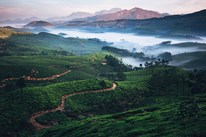Munnar Tour Package From Pune
